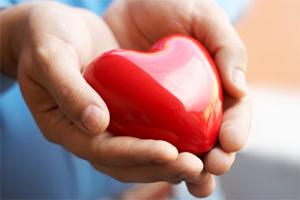 heart-in-hands