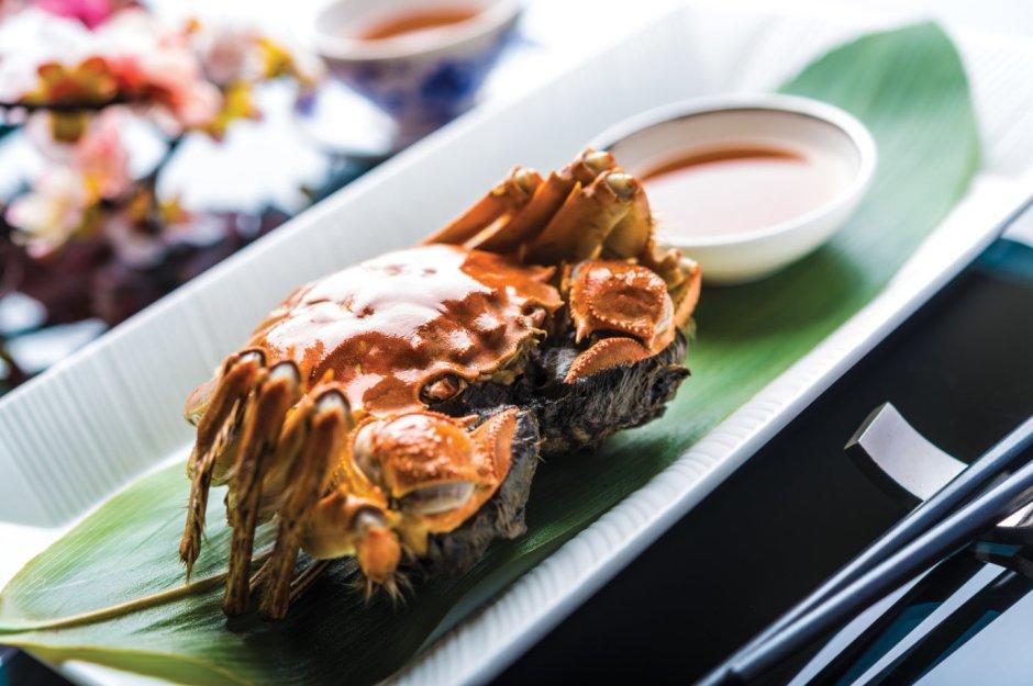 regent hairy crab